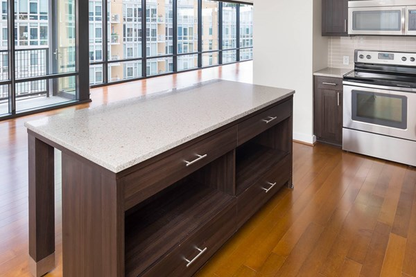 Capitol View on 14th Quartz Countertops